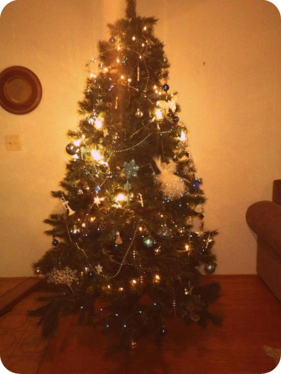 it's not the prettiest tree ever... I let my nephew so his thing since I know my kitties will tear it apart anyway!