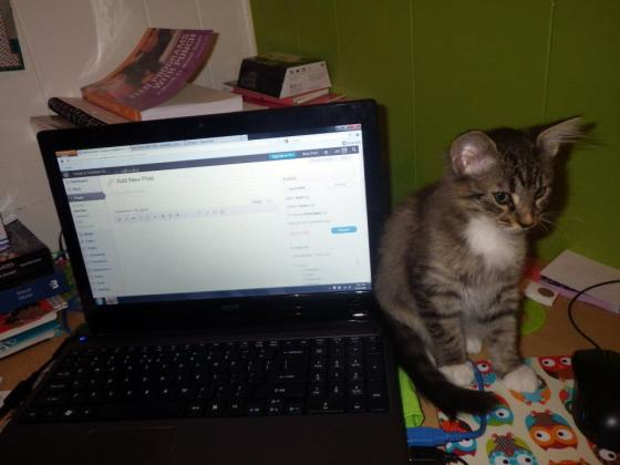 Riley helping me write a blog post (she was so tiny in September!!)